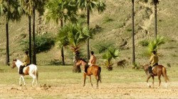 bagan horse riding tour half day 4