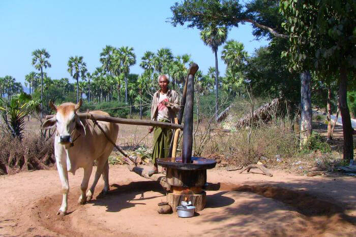 Bagan Adventure Tour 5 Days 4