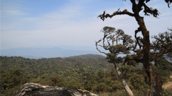 Bagan Adventure Tour 5 Days